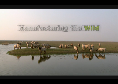 Manufacturing The Wild